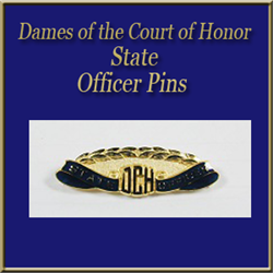 DCH State Officer Pins